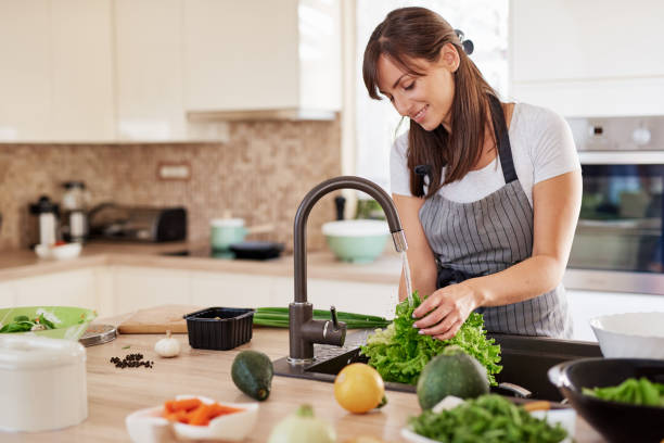 Delta Kitchen Sink Faucets (Buying Guide)